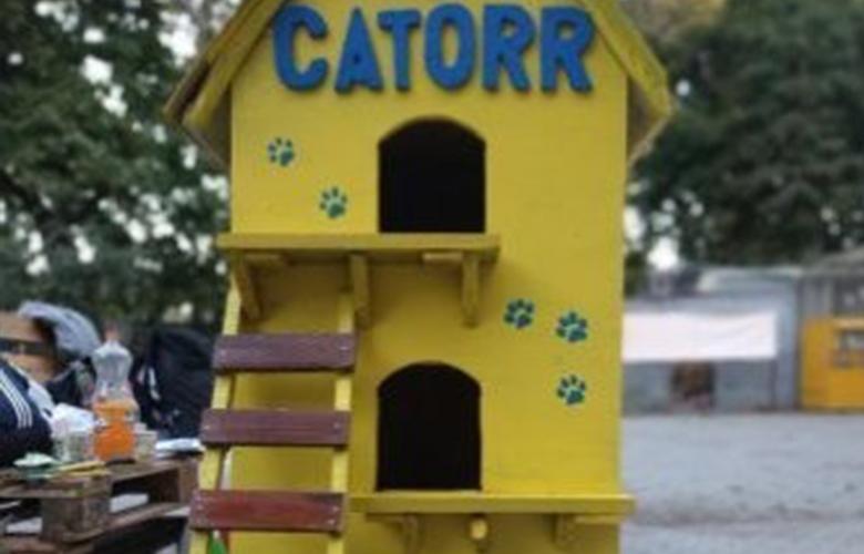 В Одессе появился кошачий домик