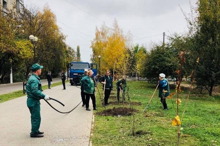 Аллея сакур украсила Крымский бульвар