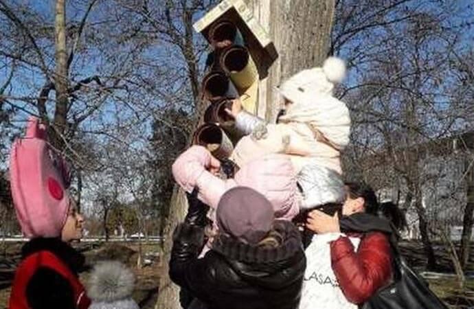 В парке им. Шевченко дети накормили птиц