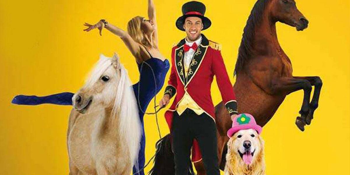 Цирковое шоу «Волшебная шляпа»