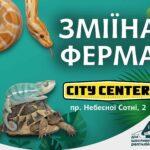 «Змеиная ферма» в Одессе